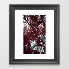 Red Leaves Framed Art Print
