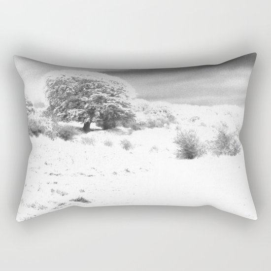 Haresfield In The Snow Rectangular Pillow