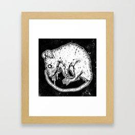 VERMIN  Framed Art Print