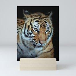 Big Tiger Mini Art Print