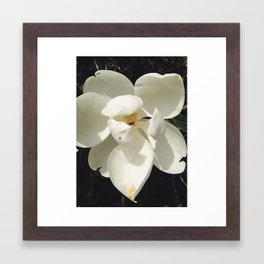 Floret Framed Art Print