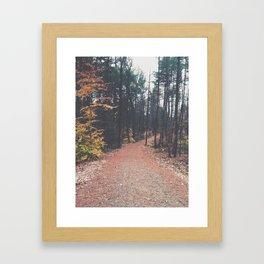 Autumn 17 Framed Art Print