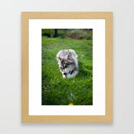 Meja Framed Art Print