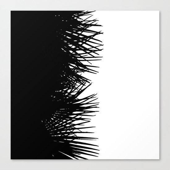 Side Fringe Canvas Print