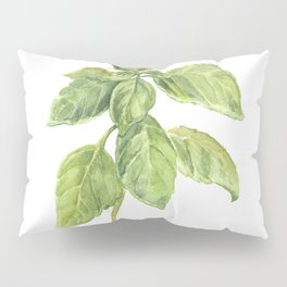 The Basil Plant Pillow Sham
