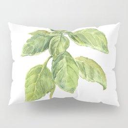 The Basil Plant Pillow Sham