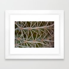 Deceiving Cactus Framed Art Print