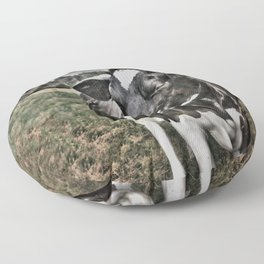 Melancholic Black White Dutch Cow Floor Pillow