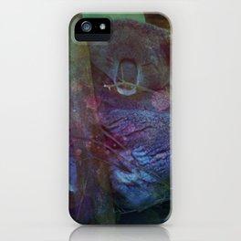 Sleeping Koala in a Tree iPhone Case