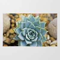 succulent Area & Throw Rugs featuring Succulent by Mistflower