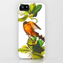 Mangrove Cuckoo iPhone Case