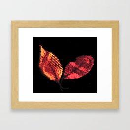 Two Leafs II Framed Art Print