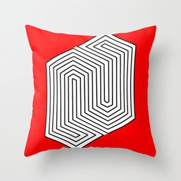Three Dimentional Effect Throw Pillow