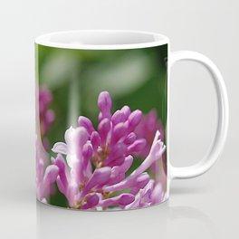 Spring lilac Coffee Mug