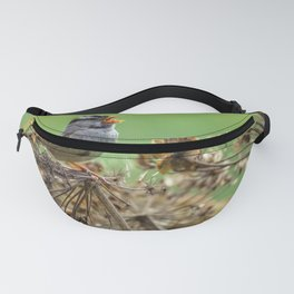 Singing Sparrow Fanny Pack