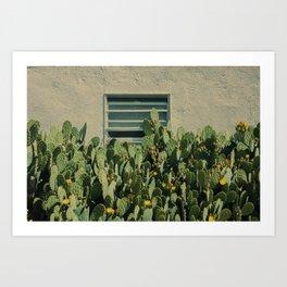 Prickly Pear Cactus in Marfa Texas Art Print