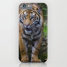 My Water  iPhone 6s Slim Case