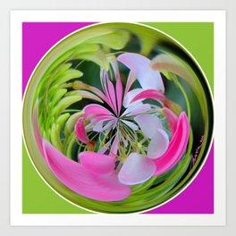 Cleome Glass Ball Art Print
