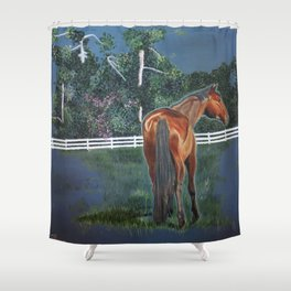 Looking On Shower Curtain
