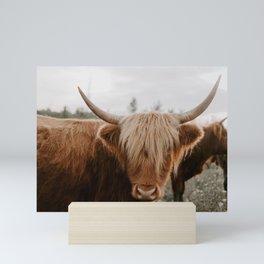 Highland Cattle 1987 Mini Art Print