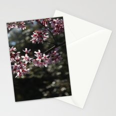 Sunlit Cherry Blossoms Stationery Cards