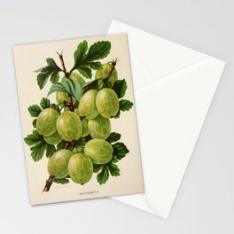 Canadian Horticulturalist 1888-96 - Whitesmith Gooseberry Stationery Cards