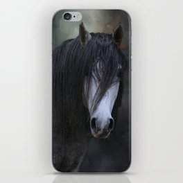 Beautiful Boy iPhone Skin