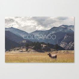 Colorado wild Canvas Print