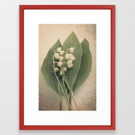 Scents of Spring - Lily of the Valley i Framed Art Print