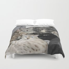 Bengal Cat Kitty Pile  Duvet Cover