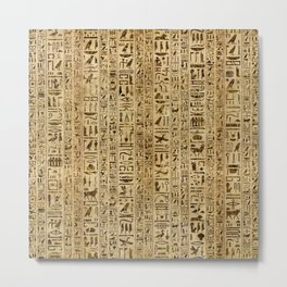 Egyptian hieroglyphs on papyrus Metal Print