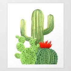 Perfect Cactus Bunch Art Print