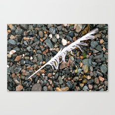 Don't let the rocks weigh you down, remember you're always - light as a feather! Canvas Print