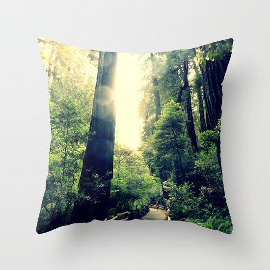 Muir Woods Path 2 Throw Pillow