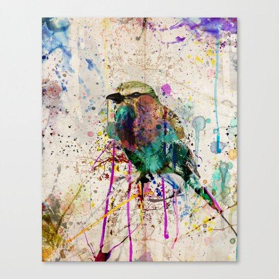 Drippy bird Canvas Print