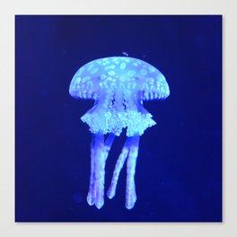Blue jellyfish Canvas Print