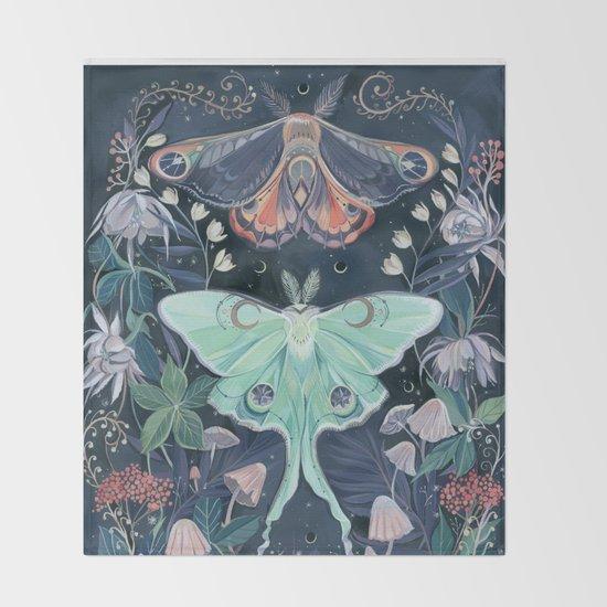 Luna Moth by claramcallister
