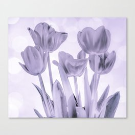Tulips (b&w) Canvas Print