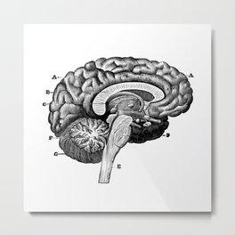 Brain 2 Metal Print