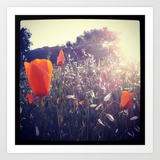Sunset Orange Art Print