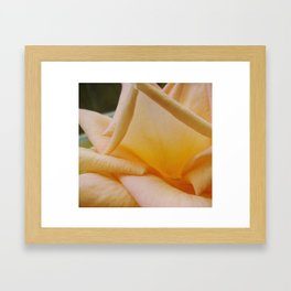 Yellow Rose Napkin Framed Art Print