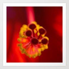 Planting Kindness To Harvest Love Art Print