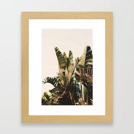 Equatorial Framed Art Print