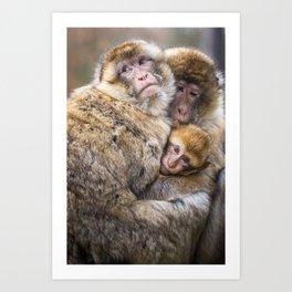 Cuddling Family Art Print
