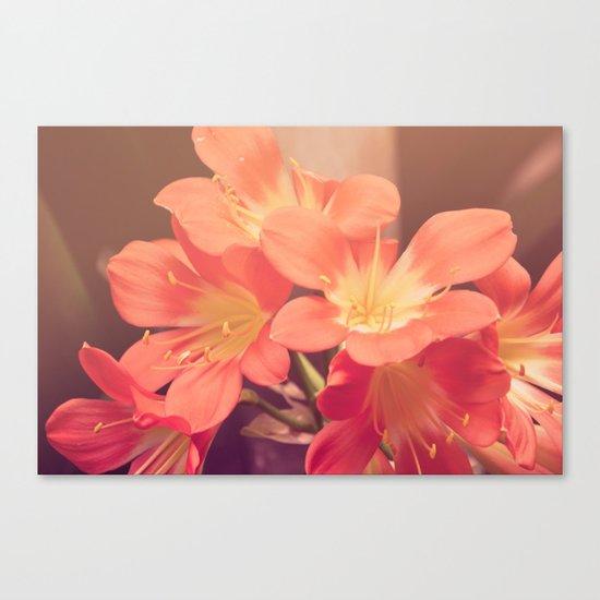 Sense of Spring Canvas Print