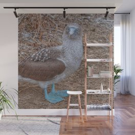 SmartMix Animal- Blue-footed Booby Wall Mural