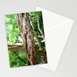 Friendship is Freedom - Singapore Stationery Cards