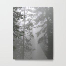 Misty Trees Metal Print