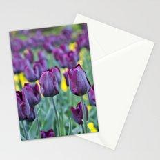 morados Stationery Cards