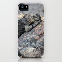 Galapagos baby marine iguana iPhone Case